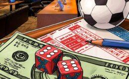 newbie in gambling